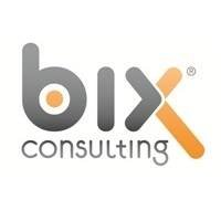 BiX Consulting GmbH & Co. KG
