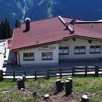 Alm Kreuzwiesen, Zillertal Arena