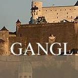 Gangl & Partner Immobilien