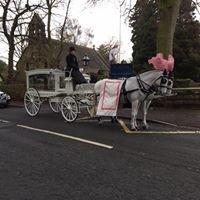 Karen Bassett's Horse Drawn Carriages