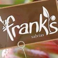Franks Salvias