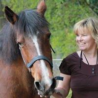 Einklang-Feldenkrais und Pferde