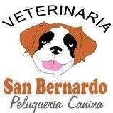 Veterinaria  San  Bernardo - Panamá - La Chorrera.