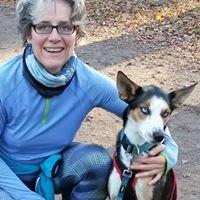 Heilpraxis für Pferd & Hund