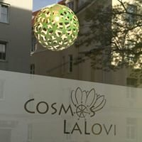 Cosmos LaLovi Creative Workshop