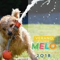 Melo Pet and Garden