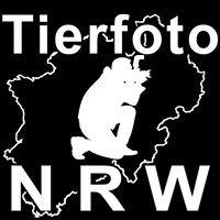 Tierfoto-NRW