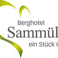 Hotel-Berggasthof Sammüller