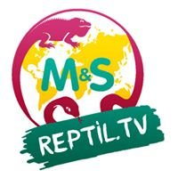 Reptil.TV