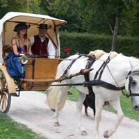 Historische Reiter- und Kutschengala