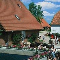Hof-Schlossblick