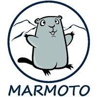 Marmoto