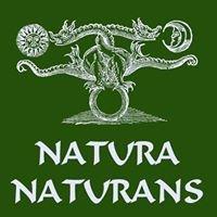Natura Naturans - Ausbildung in Heilkräuterkunde & Phytotherapie