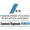 Fidal Veneto