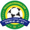 LICA Calcio