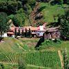 Franz Haas Winery