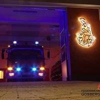 Feuerwehr Gosberg