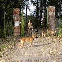 Tierschutzinitiative Vorpommern e. V.