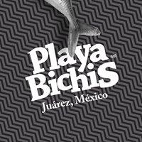 Playa Bichis