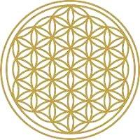 Praxis für Akupunktur & Energetische Medizin