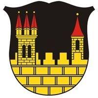 Freiwillige Feuerwehr der Stadt Radeburg