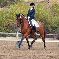 Olivia Frost Dressage