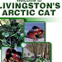 Livingston's Arctic Cat