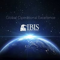 IBIS Management - Making Financial Institutions Profitably Efficient