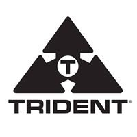 Trident Audio Developments