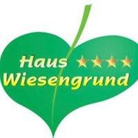 Haus Wiesengrund 4 Sterne Hotel im Sauerland