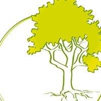 Naturtherapeutische Praxis Tilo Speer