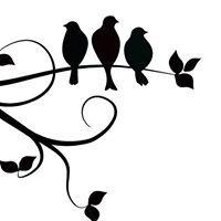 Canoga Discount Birds