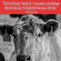 Glas životinja