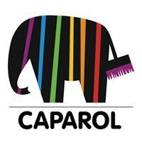 Caparol Georgia - კაპაროლი
