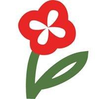 Müller - Blumen und Garten