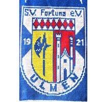 SV Fortuna Ulmen 1921 e.V.
