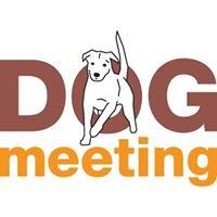 dog-meeting.ch