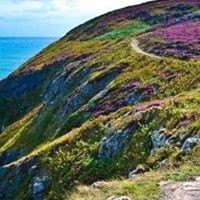 Howth Cliffs, Ireland