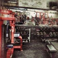 Roman physiques gym