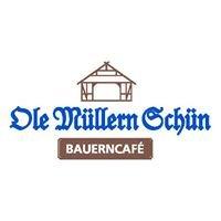 Ole Müllern Schün