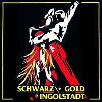 TSA Schwarz-Gold des ESV Ingolstadt Ringsee e.V.