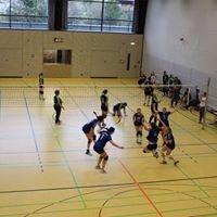 TSV Ebermannstadt Volleyball
