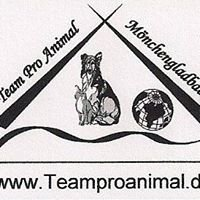 Team Pro Animal e.V. // Tieroase Bettrath