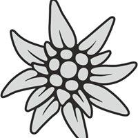 Kuhgloeckchen / Edelweiss T-Shirt Design für Allgäuer & Gleitschirmflieger