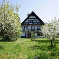Obsthof Gottenheim