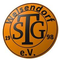 TSG Weisendorf - Volleyball