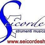 SEICORDE strumenti musicali