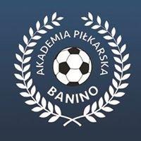Akademia Piłkarska Banino