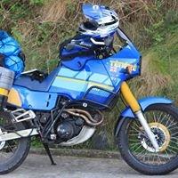 Motoward Yamaha