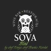 Wine bar in restavracija Sova